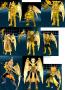 12套黃金聖鬥士聖衣(尚缺三套)