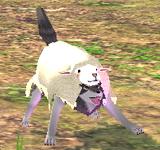 披著羊皮的狼 怪物永久連結