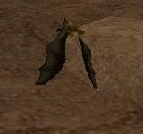 棕色洞穴蝙蝠 怪物永久連結