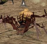 紅色硫磺蜘蛛 怪物永久連結
