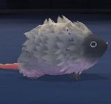 艾希諾老鼠 怪物永久連結