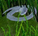 青毒蛇 怪物永久連結