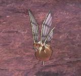 (困難)紅蜘蛛馬蜂 怪物永久連結