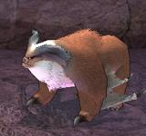 (困難)格蘭帝爾(棕) 怪物永久連結