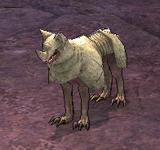 (困難)無眼惡狼(黃) 怪物永久連結