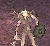 (困難)蜘蛛鬥士 怪物永久連結