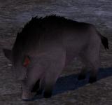 荒野野豬 怪物永久連結