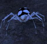 紅眼刺腳蜘蛛 怪物永久連結
