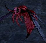巨大黃蜂士兵 怪物永久連結