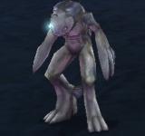 洞穴沙華魚人魔法師 怪物永久連結