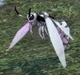 極地大胡蜂 怪物永久連結