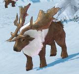 苔原馴鹿 怪物永久連結