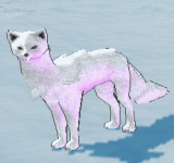 苔原狐狸 怪物永久連結
