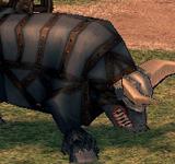 戈耳戈 怪物永久連結