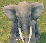 大象 怪物永久連結