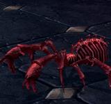 緋紅骷髏劇毒蜘蛛 怪物永久連結