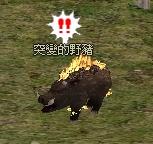 異變的野豬 怪物永久連結