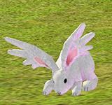 大耳兔 怪物永久連結