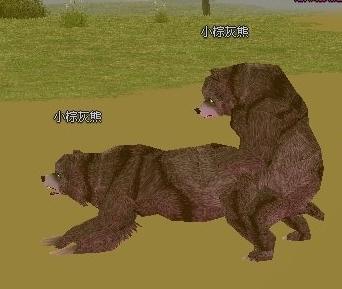 熊爺不要QQ